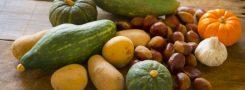 秋野菜無料画像