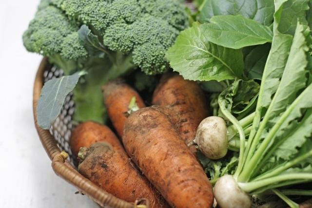 無料冬野菜